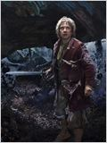 Le Hobbit : la D&#233;solation de Smaug