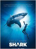 Requins blancs 3D