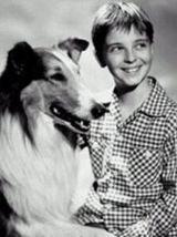 affiche Lassie (1954)