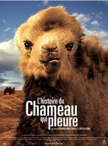 Les choristes les films similaires allocin for Dujardin qui fait le chameau