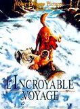 L'Incroyable Voyage streaming