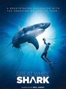 requins blancs 3d film 2015 allocin. Black Bedroom Furniture Sets. Home Design Ideas