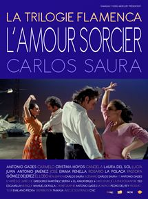 L'Amour sorcier streaming