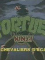 Tortues Ninja Les Chevaliers D Ecaille Serie Tv 1987 Allocine