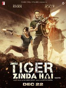 Tiger Zinda Hai Bande-annonce VO