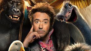 Robert Downey Jr dans Le Voyage du Dr Dolittle, Jungle Cruise et Jumanji 2 avec Dawyne Johnson... Les photos ciné de la semaine !