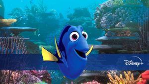 Disney+ : La Petite Sirène, Le Monde de Dory… 5 films pour visiter les fonds marins sans prendre l'eau