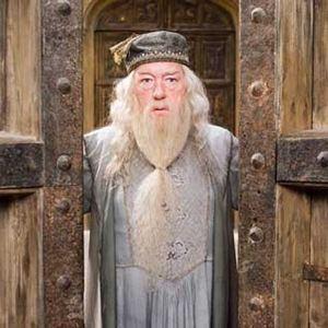 Harry Potter et l'Ordre du Phénix : Photo Michael Gambon