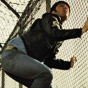 Vol au-dessus d'un nid de coucou : Photo Jack Nicholson, Milos Forman
