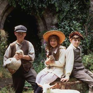 Le jardin secret film 1993 allocin for Le jardin secret film