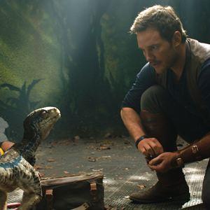 Jurassic World: Fallen Kingdom : Photo Chris Pratt