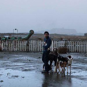 Dogman : Photo Marcello Fonte