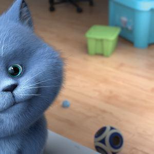 Oscar et le monde des chats : Photo