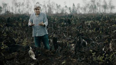 """Manu Payet et le greenwashing : """"On se fait balader tout le temps, c'est ça, l'illusion verte"""""""