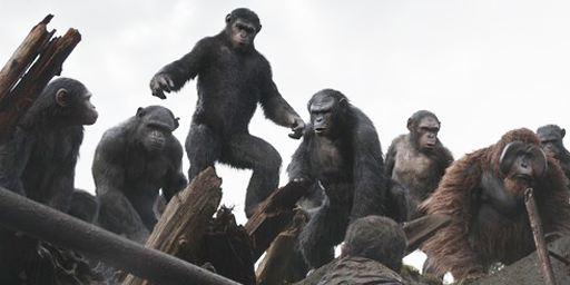 Sorties cinéma : La Planète des singes l'affrontement triomphe dans les premières séances