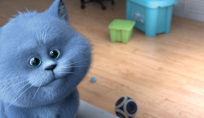Photo du film Oscar et le monde des chats