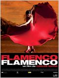 Flamenco, Flamenco