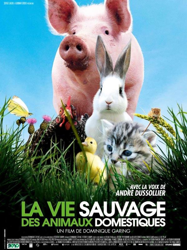 D And D Trailers >> La Vie sauvage des animaux domestiques - film 2009 - AlloCiné