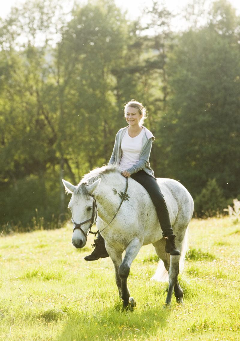 photo de rebecca plymholt le cheval de klara photo alexander moberg rebecca plymholt allocin. Black Bedroom Furniture Sets. Home Design Ideas
