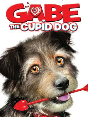 Image Gabe : Un amour de chien