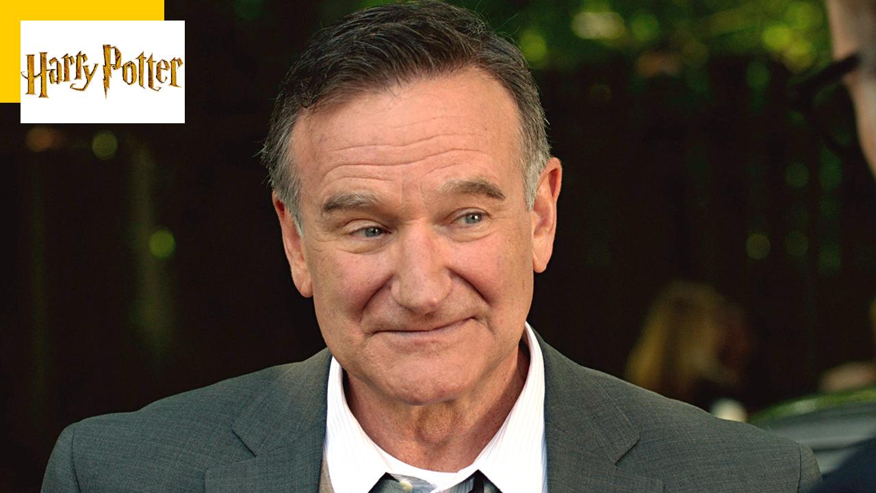 Harry Potter : quel professeur Robin Williams voulait-il jouer ?