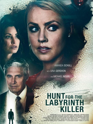 Le labyrinthe de l'injustice |FRENCH| [DVDRiP]