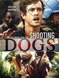 Photo : Shooting Dogs