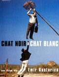 Photo : Chat noir, chat blanc