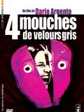 Photo : Quatre mouches de velours gris