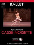 Photo : Casse-noisette (Côté Diffusion)