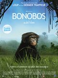 Photo : Bonobos