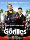 Photo : Les Gorilles