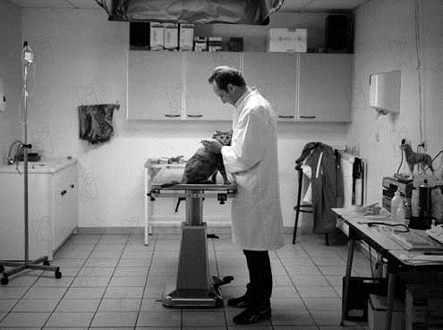 Entre ses mains : Photo Benoît Poelvoorde