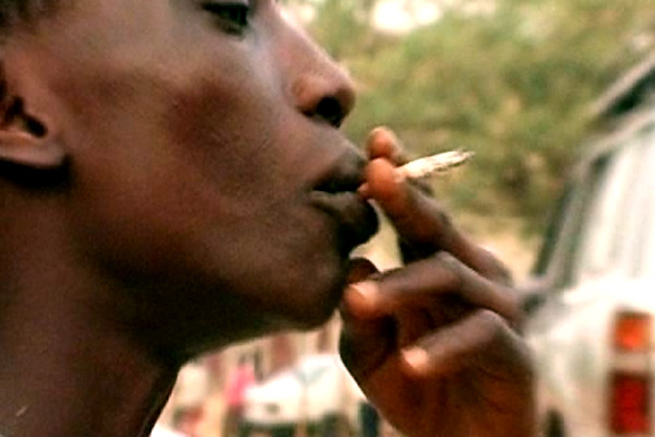 Tabac, la conspiration : photo