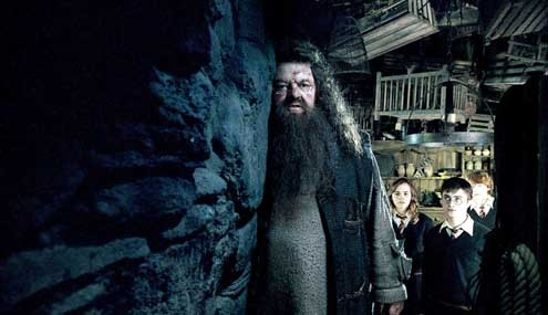 Harry Potter et l'Ordre du Phénix : Photo Daniel Radcliffe, Emma Watson, Rupert Grint