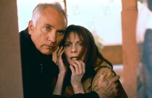 L'Anglais : Photo Lesley Ann Warren, Terence Stamp