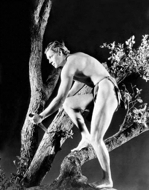 Tarzan, l'homme singe : Photo Johnny Weissmuller, W.S. Van Dyke