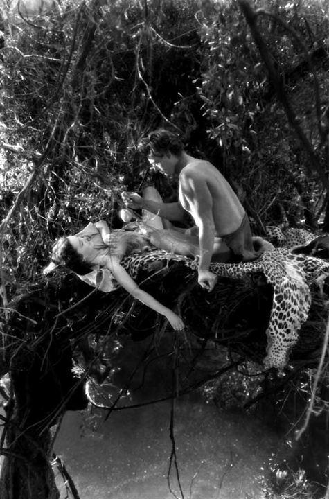 Tarzan, l'homme singe : Photo