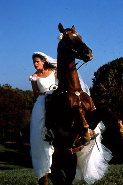 Just married (ou presque) : Photo Julia Roberts