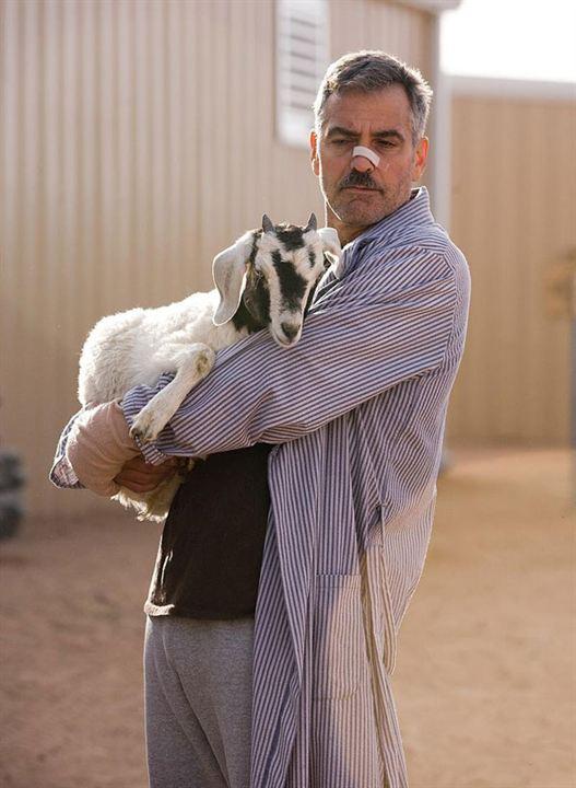 Les Chèvres du Pentagone : Photo George Clooney, Grant Heslov