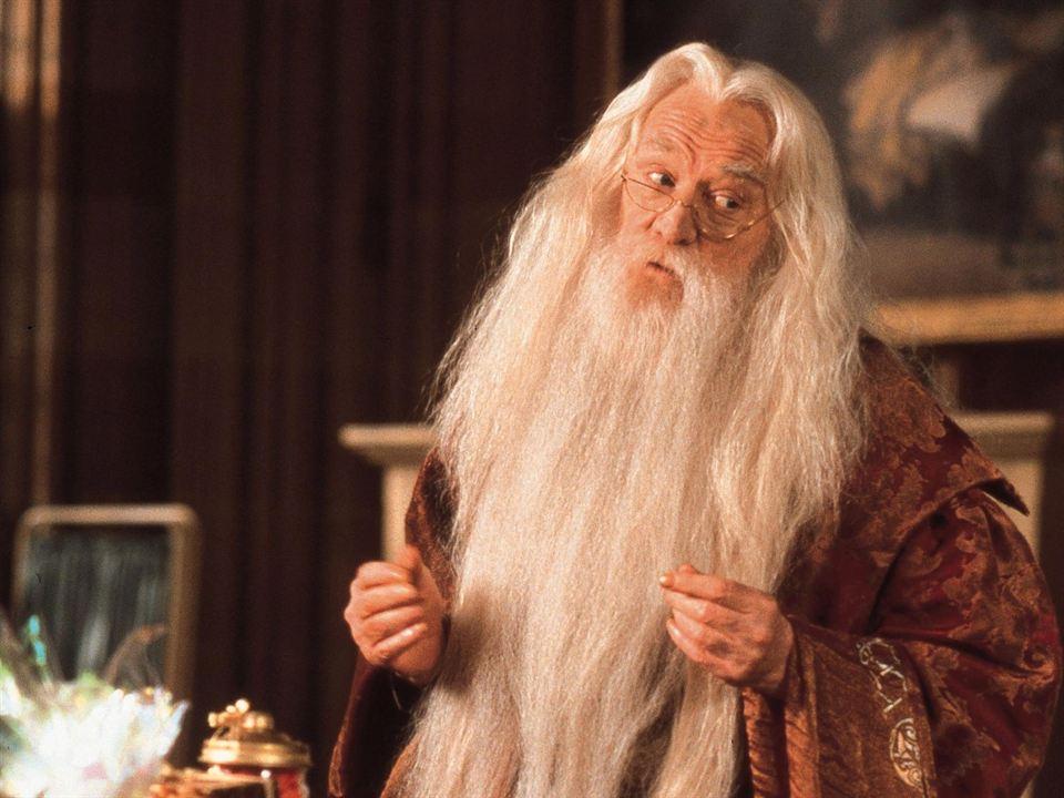 """Barbe de sorcier d'Albus Dumbledore (Richard Harris) dans """"Harry Potter à l'école des sorciers"""""""