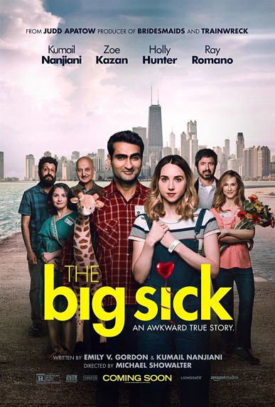 N°5 - The Big Sick : 7,6 millions de dollars de recettes