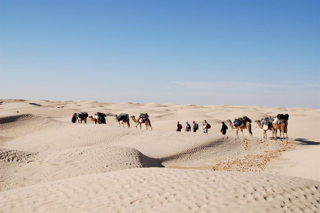 Au-delà du regard, Oser le désert : Photo
