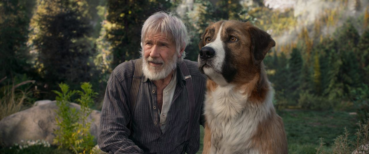 L'Appel de la forêt : Photo Harrison Ford