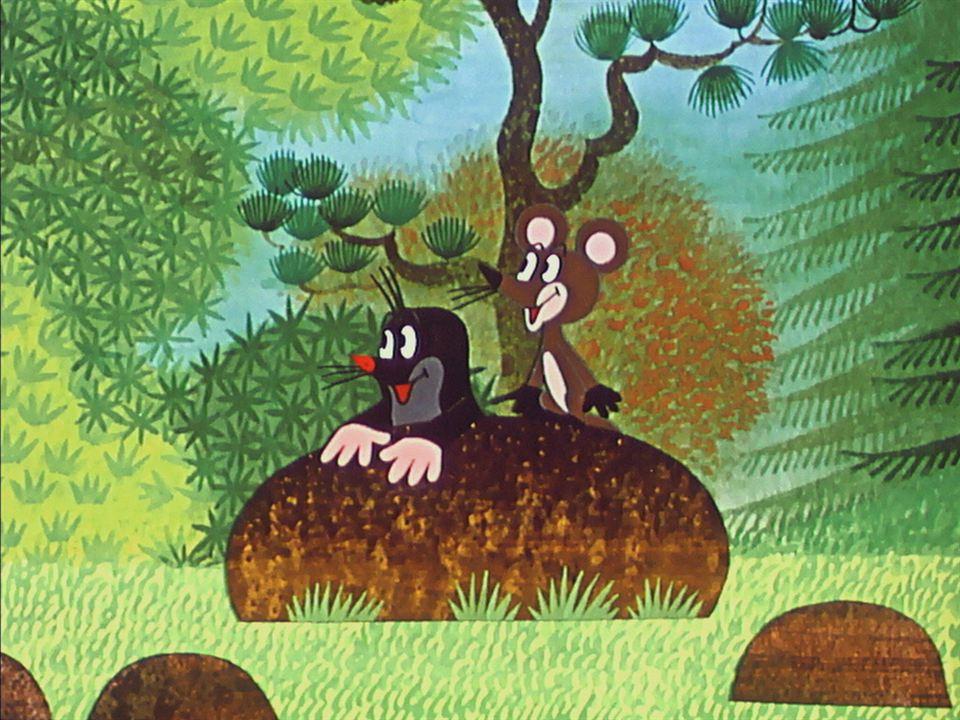 La Petite taupe aime la nature : Photo