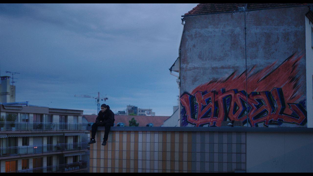 Vandal : Photo