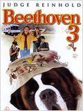 Beethoven 3 affiche
