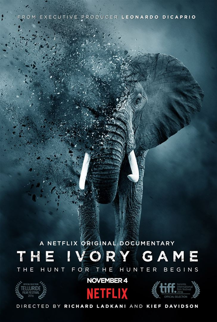 The Ivory Game VOSTFR 1080p WEBRIP 2016