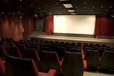 Cinéma Henri Verneuil