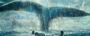 """Au coeur de l'océan : """"Notre baleine n'est pas le requin des Dents de la mer"""""""